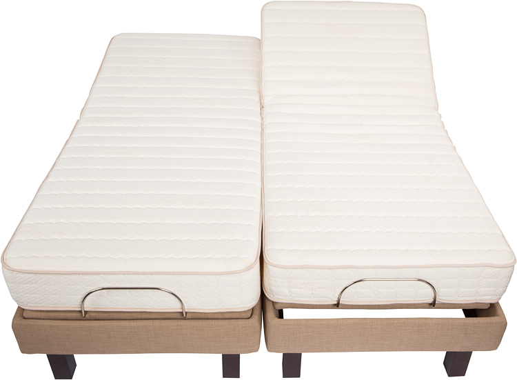 dual king electric bed